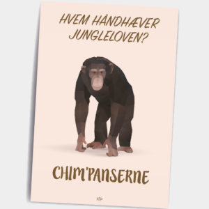 chimpanse_postkort-2